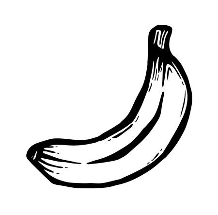 weegbree: Black painted banana, vector illustration