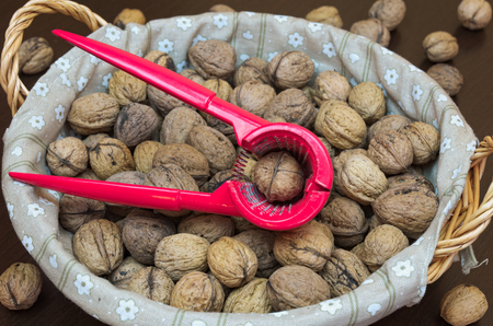 Crusher with filbert-nuts in basket