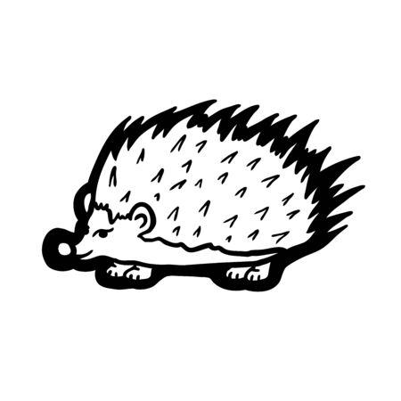 Painted hedgehog, vector illustration