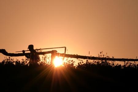 Homme avec une faux dans le village en contre-jour. Scène rurale. Silhouette de jeune agriculteur dans le village debout avec un outil de râteau de faux faucille en été vert