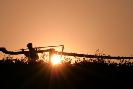 Man with a scythe in the village on backlight. Rural scene. Silhouette of young farmer in village standing with sickle scythe rake tool in green summer 스톡 콘텐츠