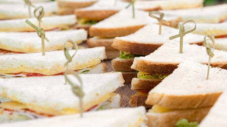 Food catering Cuisine Culinary Gourmet Buffet. Delicious seasonal catering, meal. Business lunch, snack. Catering menu. Background of toasties. Sandwich tray