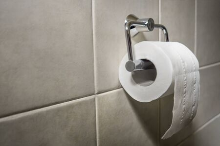 Roll of white toilet paper on metal paper holder. White and soft toilet paper on metal holder. Tissue roll in the toilet home. Bathroom tissue hanging on the wall. Toilet paper on white tiles Stok Fotoğraf