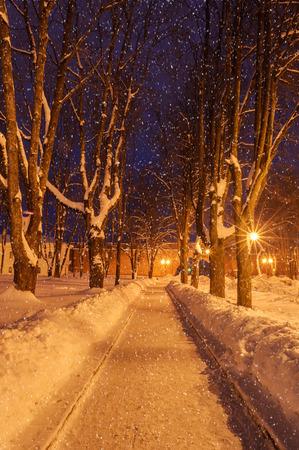 The winter evening photo