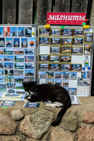PSKOV, RUSSIA - MAY 5, 2013: Cat resting on a tray with magnets in the Pskov-Caves Monastery on May 5, 2013