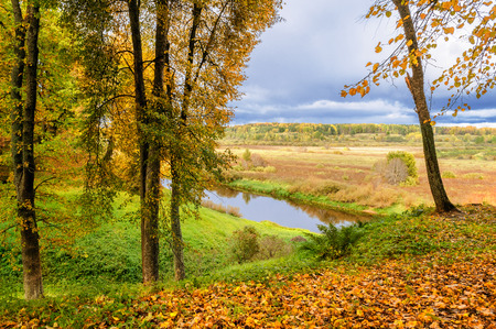gory: View of the valley of river Soroti, Pushkinskiye Gory. Stock Photo