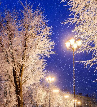 winter evening: The winter evening, filter processing Stock Photo
