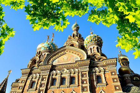 saviour: Cathedral of Our Saviour on Spilled Blood Saint-Petersburg, Russia framed by green leaves