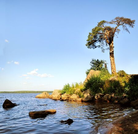 repo: Protective Bay on the Gulf of Finland - summer landscape