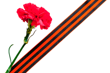 9 May Victory Day background. Red carnation with George ribbon isolated on the white background. Stock Photo