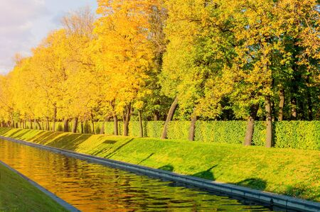 Autumn landscape - golden autumn trees along the city channel in autumn sunny weather