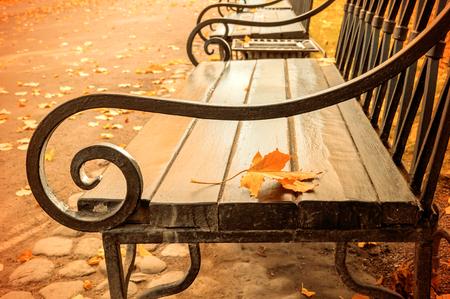 Herbstlandschaft - gelb gefärbtes Herbstblatt auf der hölzernen einsamen Bank im Herbstpark. Vintage-Filter angewendet Standard-Bild