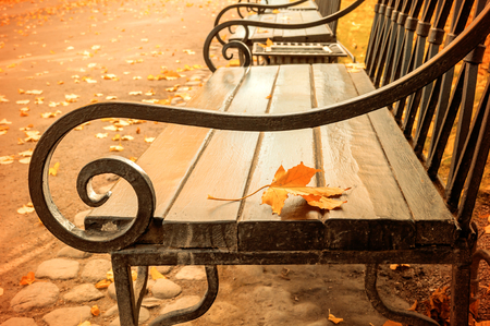 Autumn landscape - yellowed autumn leaf on the wooden lonely bench in the autumn park. Vintage filter applied