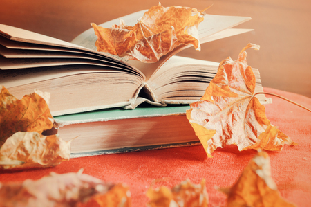 Autumn background. Old books on the table among the dry yellow maple autumn leaves Banque d'images