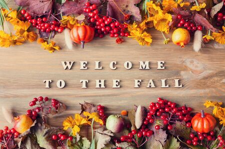 Autumn background with Welcome to the fall letters and autumn seasonal berries, pumpkins and flowers on the wooden background. Autumn concept
