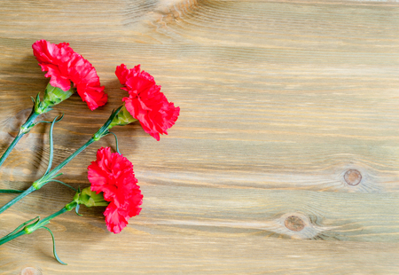9 May background with red carnations on the wooden background, free space for 9 May text