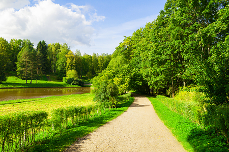 Summer landscape - forest trees growing at the bank of the river and narrow path. Summer park nature in sunny day