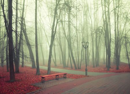 Autumn park in dense fog - lonely bench under the bare trees among the fallen red leaves. Vintage tones applied Stock fotó