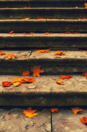 Autumn leaves background. Fallen maple leaves on the old textured stone staircase - autumn city landscape, vintage filter applied