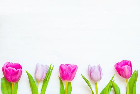 Lovely spring tulip flowers on wooden backdrop, spring postcard. Spring flower background with spring tulip flowers Stock fotó