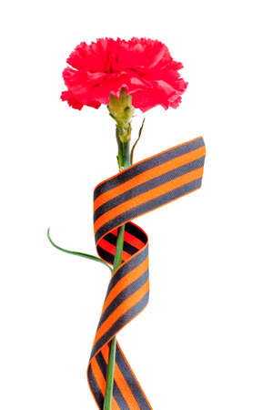 9 May Victory Day background. Red carnation wrapped in St George ribbon isolated on white background