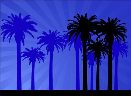 Palm - retro achtergrond