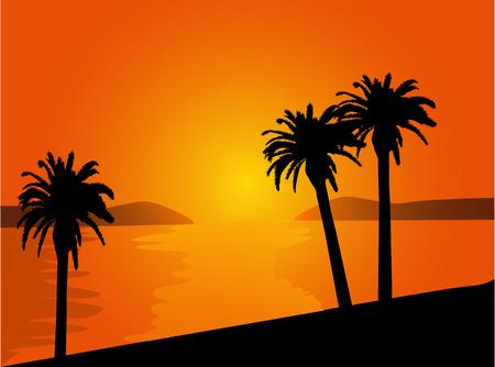 strand met palmbomen bij zonsondergang