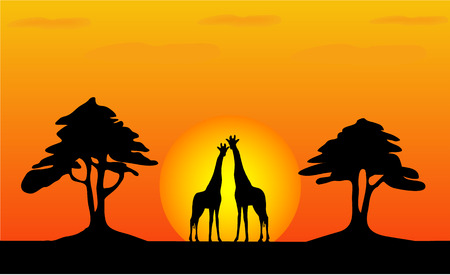 Zonsondergang in de zomer veld  Vector Illustratie