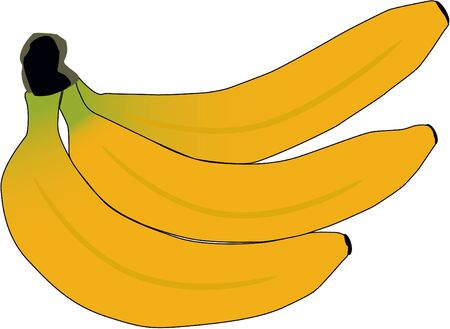 banana skin: Banana, vector work Illustration