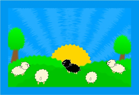 balck and white: Sheeps in nature-illustration