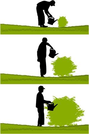 gardener: Gardener