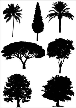 colection: tree sillhouettes Illustration