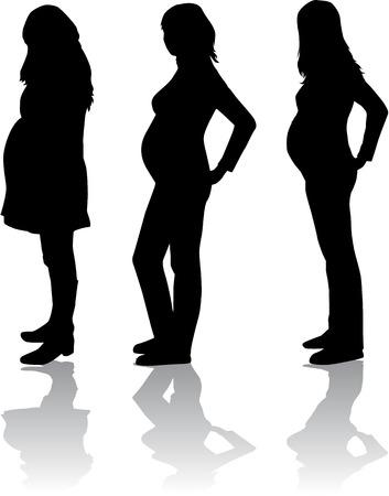 La silhouette de la femme enceinte Banque d'images - 24990828
