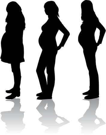 Silhouette of the pregnant woman  Vector