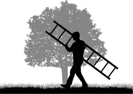 arbres silhouette: Man avec échelle. Les Noirs silhouette.