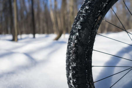 Bicycle wheel in the snow with place for text. Winter bike season. High quality photo