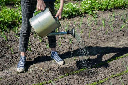 girl farmer in a garden bed in her village. Eco growing. Gardening in backyard
