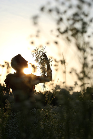blessedness: A silhouette of a beautiful girl holding flowers in the meadow at sunset