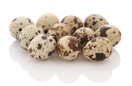 quail eggs isolate, close-up Standard-Bild