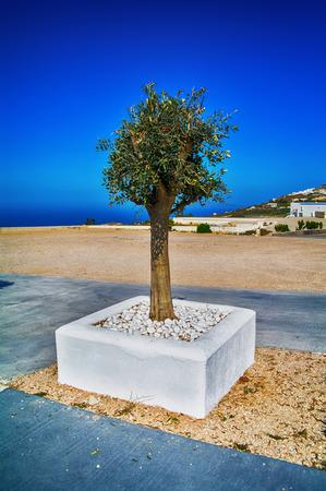 mediterranean culture: Greek nature, Santorini