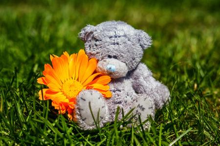 plush: Soft plush teddy bear with flower