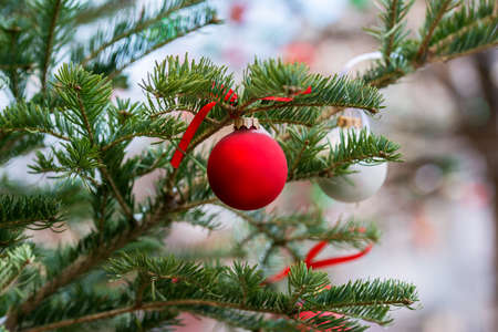 decorating: Decorating Christmas tree