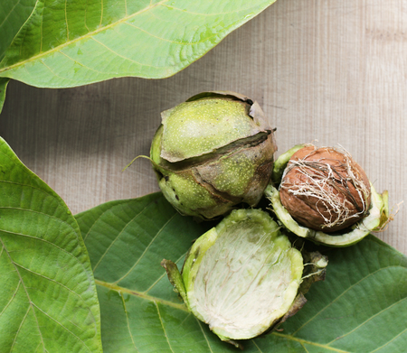 deg: Ripe walnuts with leaves on a background of wood