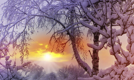 Sunset on the background of winter nature Stock Photo