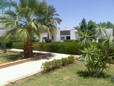sharm: Sharm al-sheikh Stock Photo