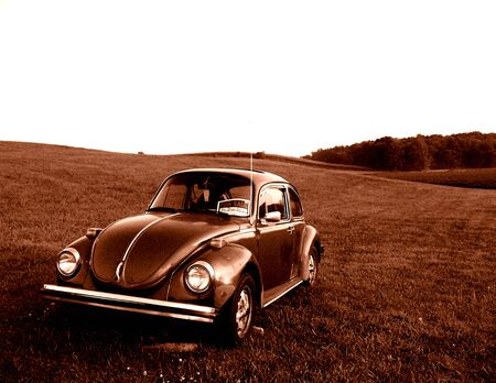 This old forgotten beatle must have been for sale for years before being left to let time take over.