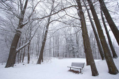 A park bench foregrounds this winter scenic. Stock Photo