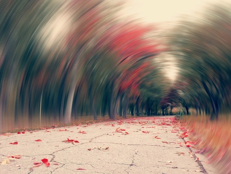 print: Artistic view of a street in a autumnal season with trees time tunnel effect