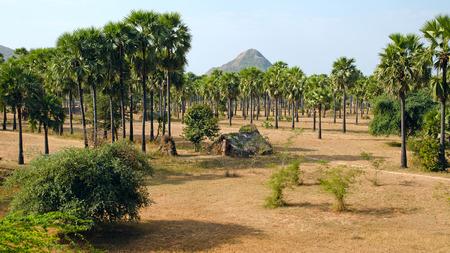 dwelling mound: Slum Myanmar Stock Photo