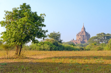 stupas: Stupa e pagode di Bagan antico Myanmar Archivio Fotografico